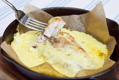 Pike perch in a cheese sauce